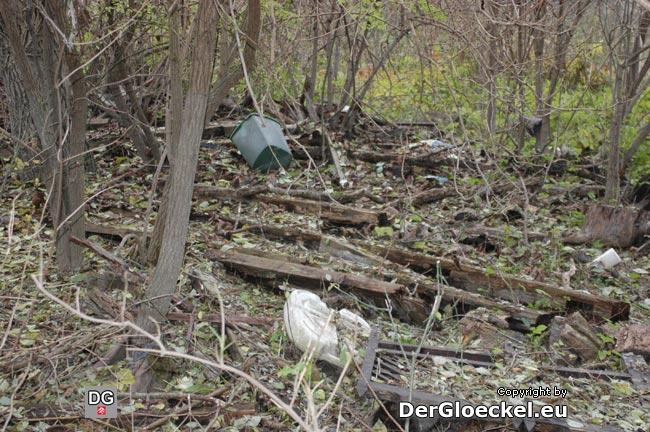 Abfallbeseitigung im Wald - wo bleibt das Verantwortungsbewußtsein gegenüber Mitmenschen und Umwelt?