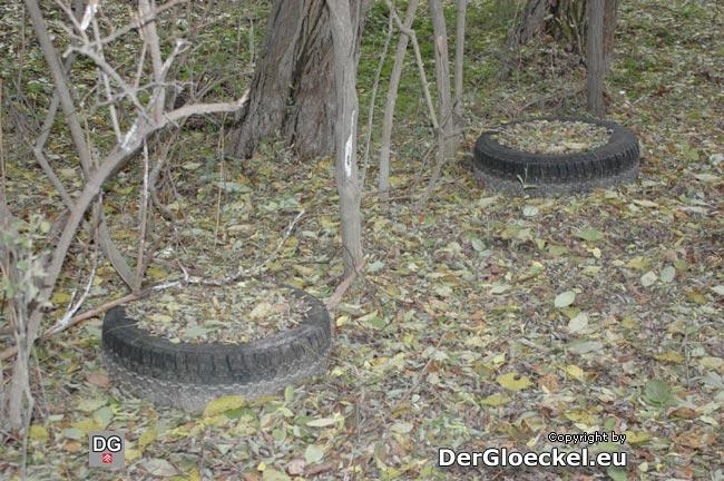 Mülldeponie der Jägerhaussiedlung im Wald