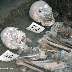 Zwei Skelette