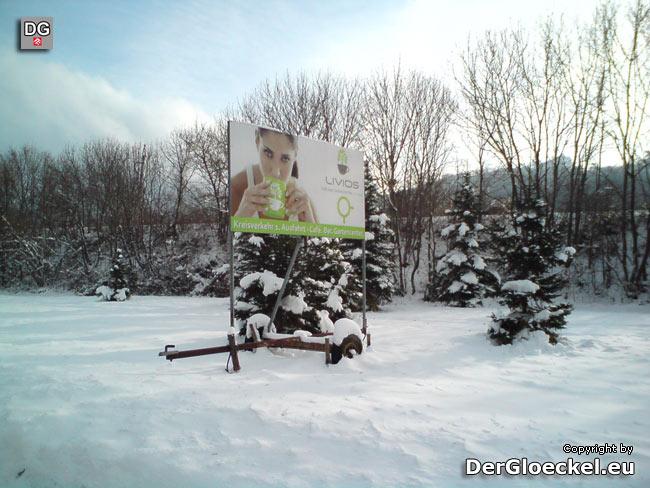 Lokalaugenschein am 6.12.10: rechtswidrige Werbung der LIVIOS GmbH